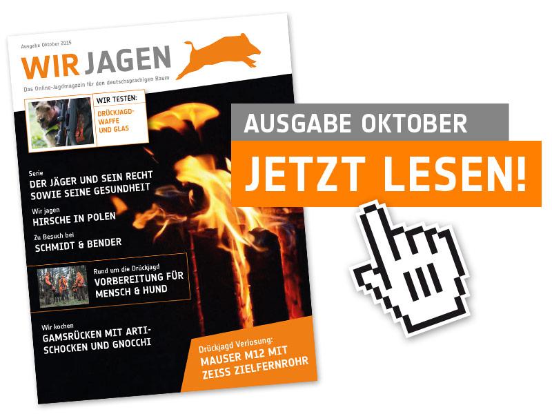 Cover_Nov15