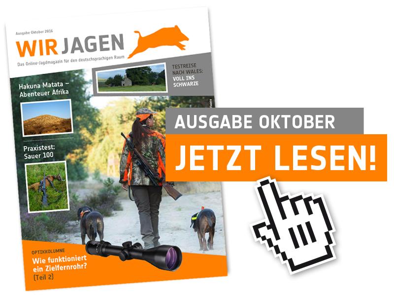 vorlage_cover_oktober_2016