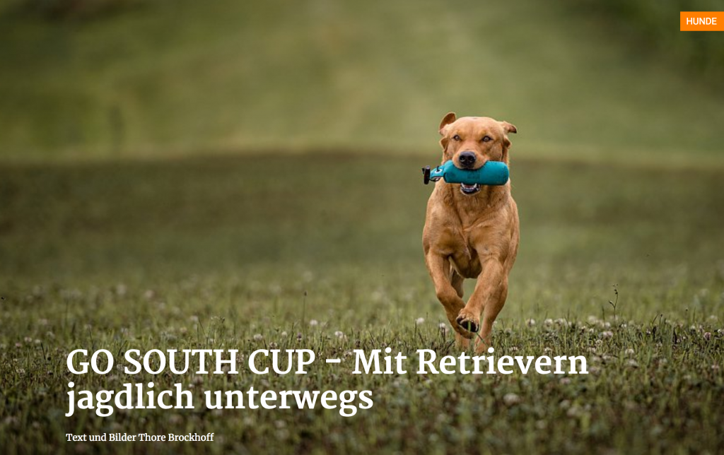 South Cup