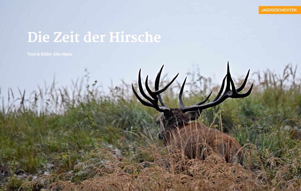 Die Zeit der Hirsche