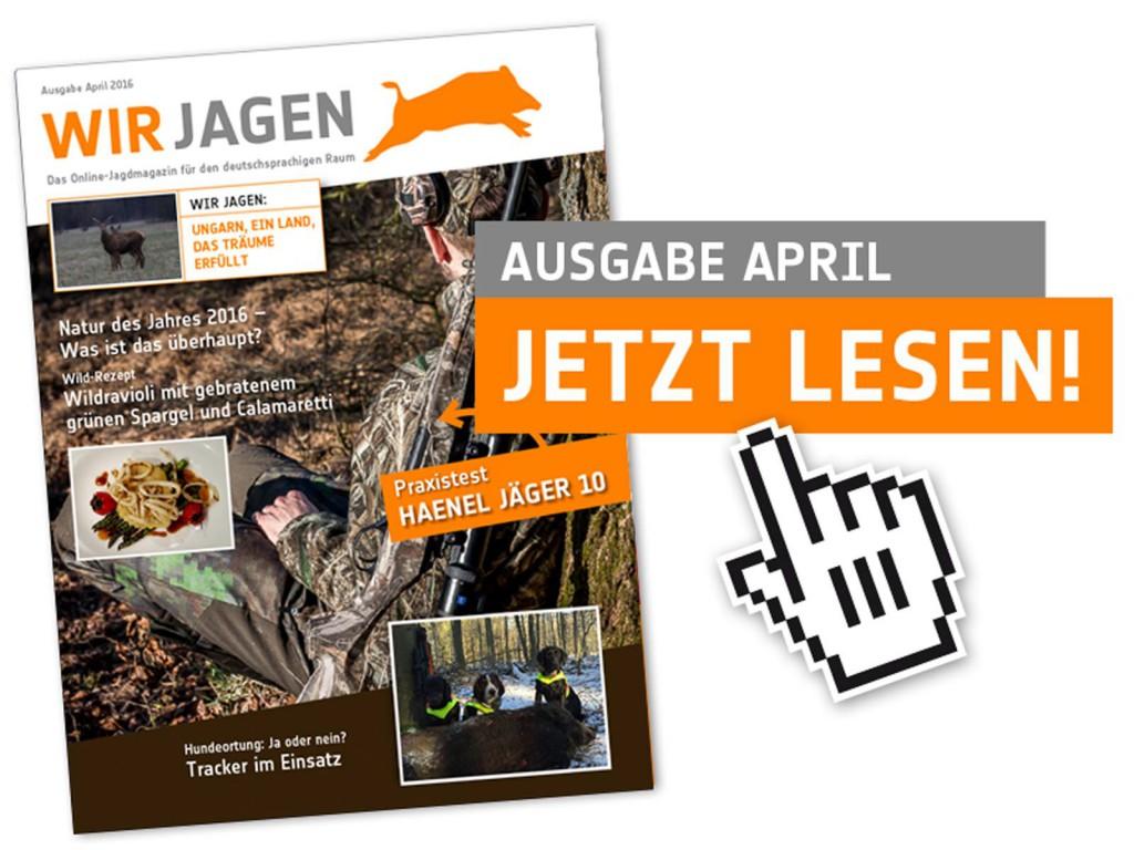 Cover April