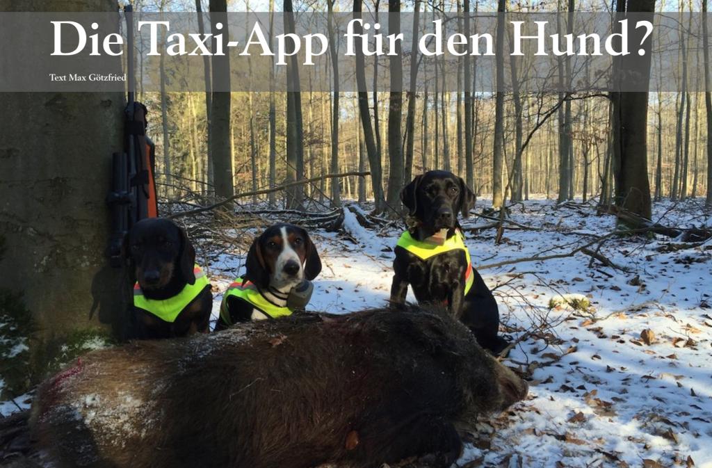 Taxi-App für den Hund