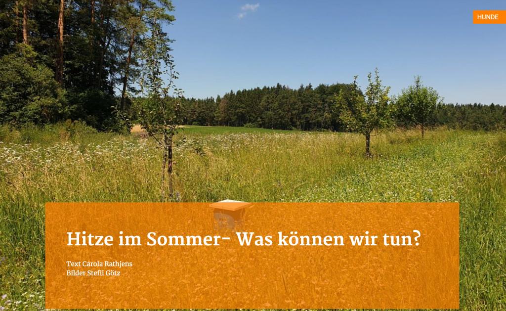 Hitze im Sommer